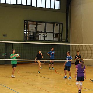 Volleyball 2014-015